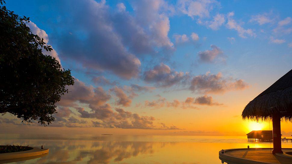 Hotel dusit thani maldives Pool_Bar_at_Sunset