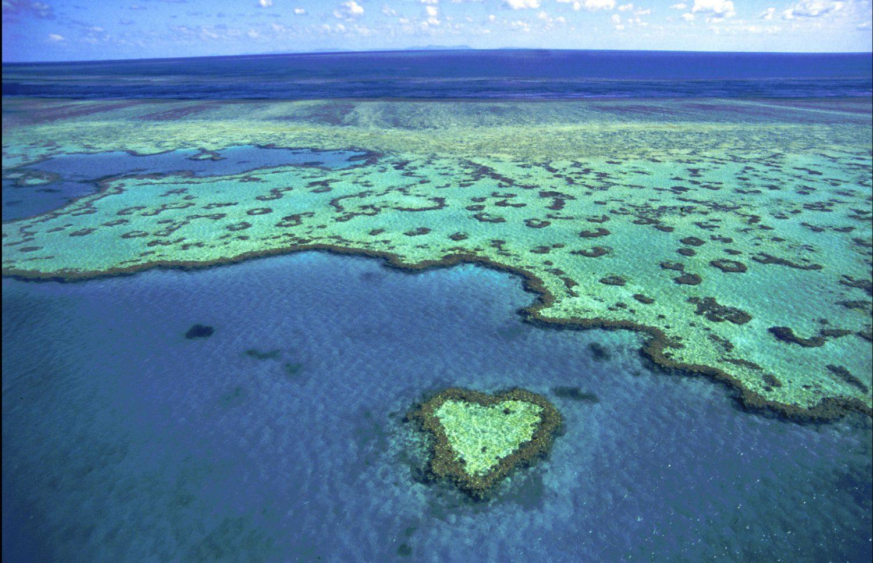 Heart reef - coeur vue d'en haut