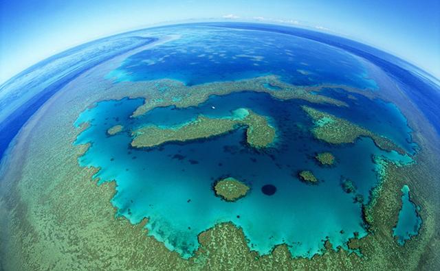 Heart reef - photo fisheye barierre corail