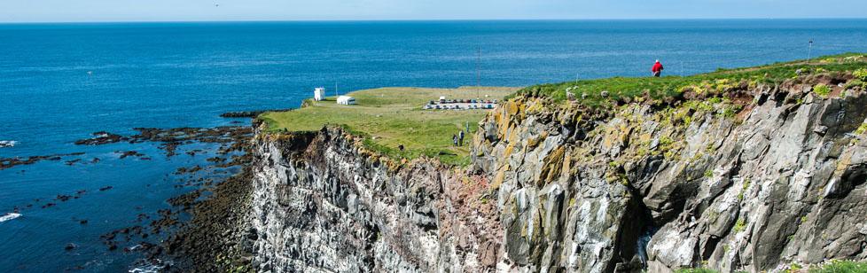 Latrabjarg Cliffs dans les fjords de l'Ouest de l'Islande