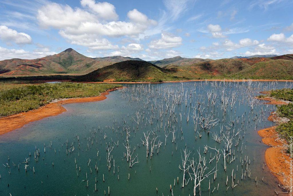 Voyage de Noces Nouvelle Calédonie - Parc de la rivière Bleue