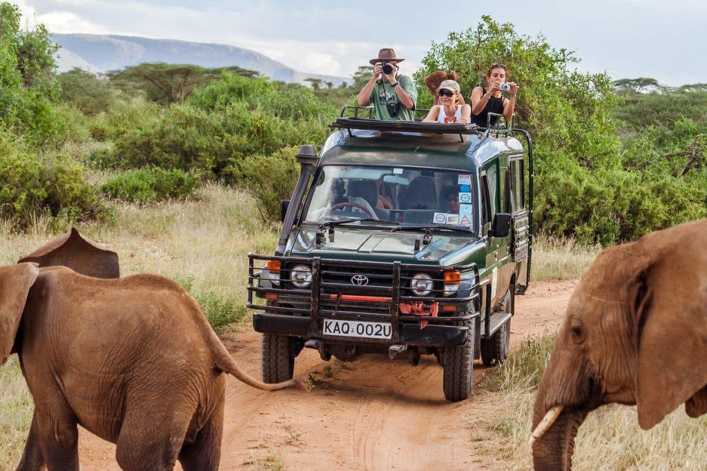 Comment et pourquoi planifier un voyage en Afrique ?