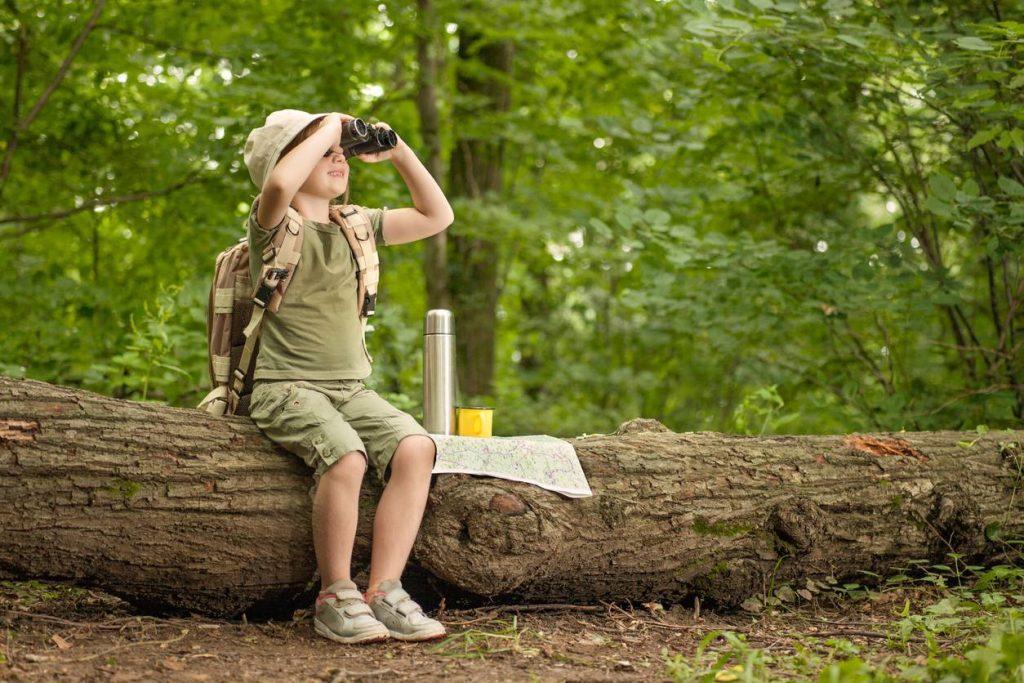 Passer des vacances à La Forêt-Fouesnant